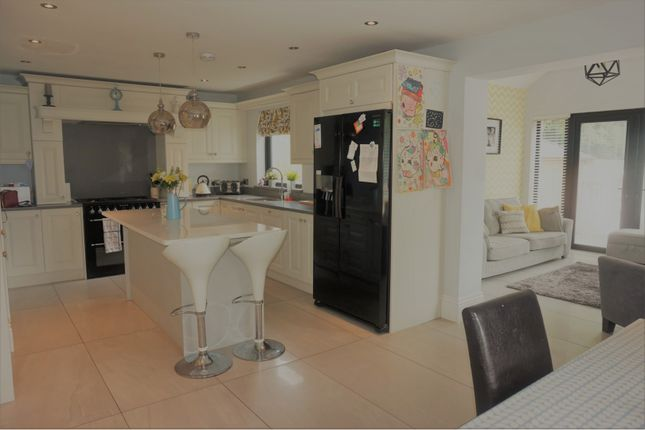 Thumbnail Detached house for sale in Blighs Lane, Derry / Londonderry
