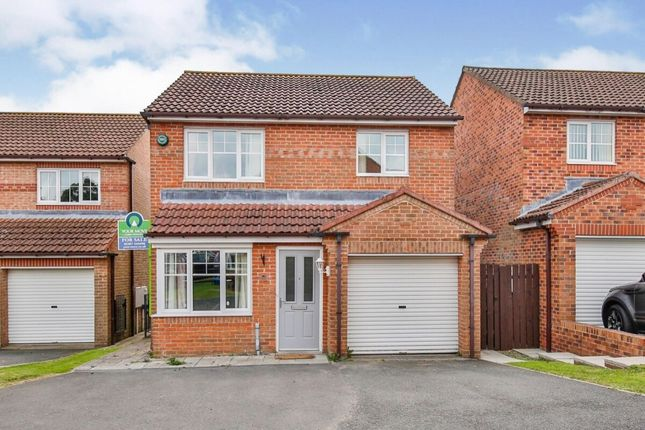 Thumbnail Detached house for sale in West Meadows, Chopwell, Newcastle Upon Tyne
