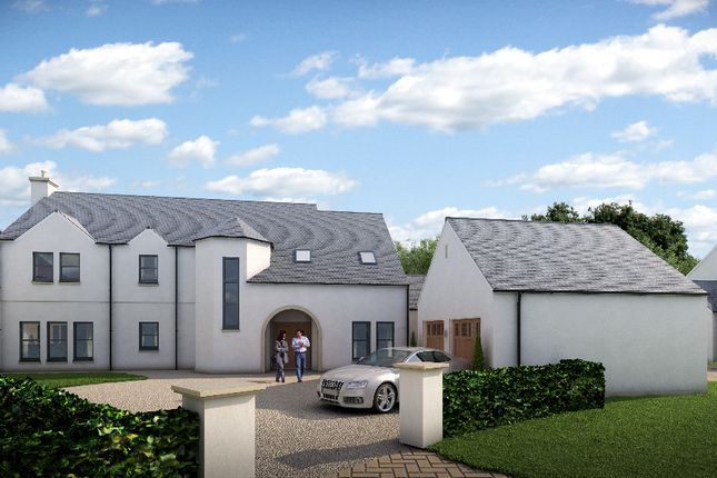 Thumbnail Detached house for sale in Plot 30, Larbert, Falkirk