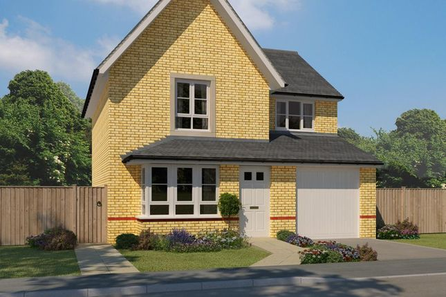 """Thumbnail Detached house for sale in """"Airth"""" at Ravenscliff Road, Motherwell"""