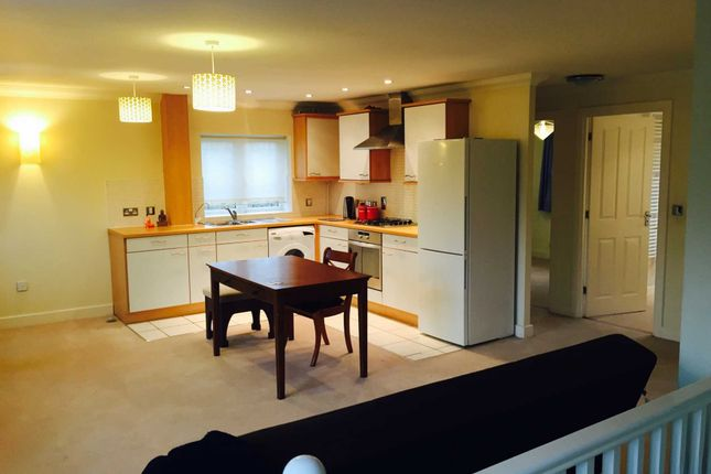Thumbnail Maisonette to rent in Tiggall Close, Earley, Reading