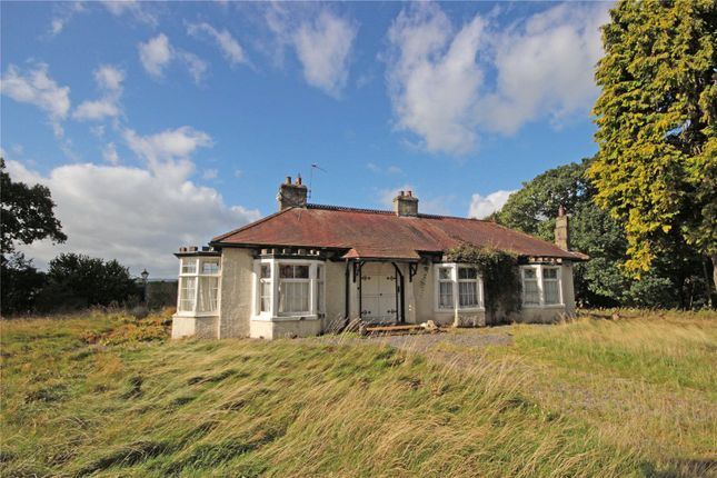 Thumbnail Detached bungalow for sale in The Grange, Great Musgrave, Kirkby Stephen, Cumbria