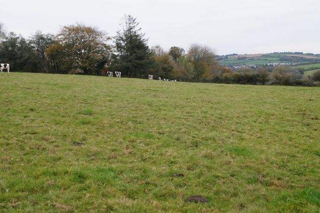Thumbnail Land for sale in Glogue, Llanfyrnach, 0Ed