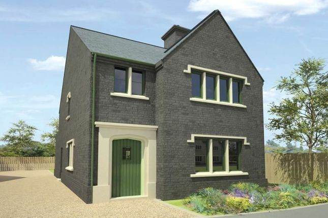 Thumbnail Detached house for sale in College Green, College Avenue, Bangor