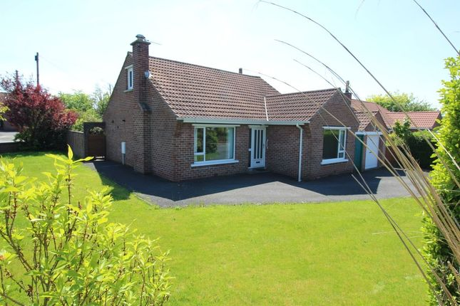 Thumbnail Detached house for sale in Carolhill Park, Bangor
