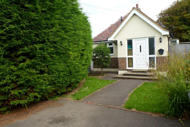 Thumbnail Bungalow to rent in Sunny Close, Goring-By-Sea, Worthing