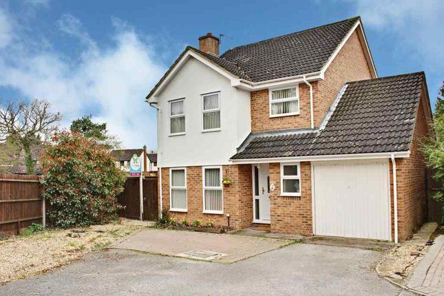 Thumbnail Detached house for sale in Juniper Close, Chineham, Basingstoke