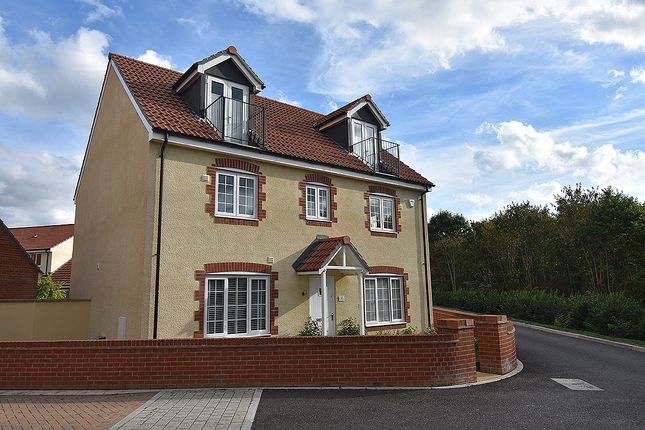Thumbnail Detached house for sale in Best Park, Cranbrook, Near Exeter