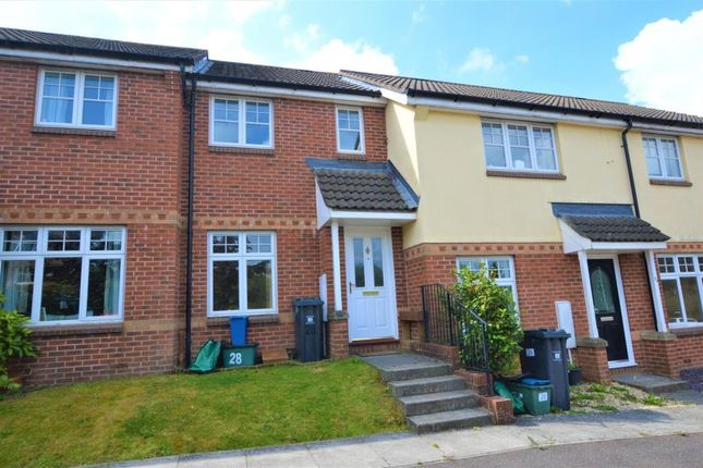 2 bed terraced house to rent in Biddington Way, Honiton, Devon EX14