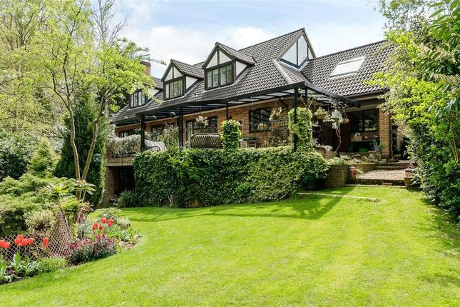 Detached house to rent in Beech Close, Cobham