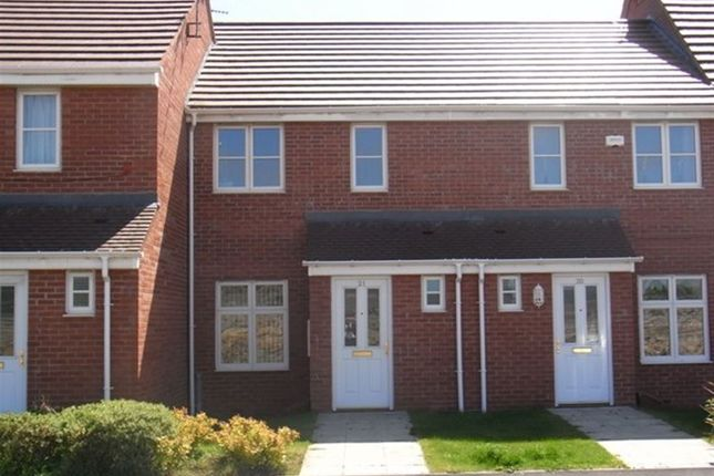 Thumbnail Terraced house to rent in County Mews, South Shields
