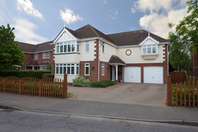 Thumbnail Detached house for sale in Colchester Road, West Mersea, Colchester