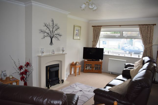 Thumbnail Detached bungalow for sale in Foxs Close, Holwell, Sherborne
