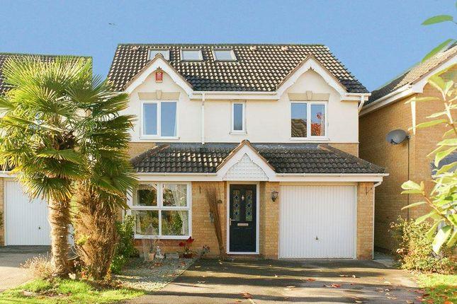 Thumbnail Detached house to rent in Stokehill, Hilperton, Trowbridge