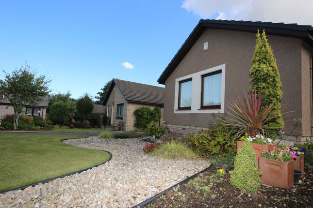 Thumbnail Detached bungalow to rent in 21 Rennie Place, East Linton