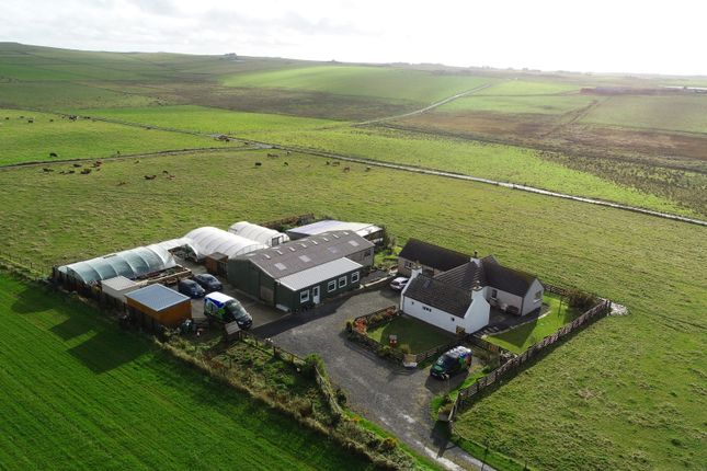 4 bed detached house for sale in Gricegarth, South Ronaldsay, Orkney KW17