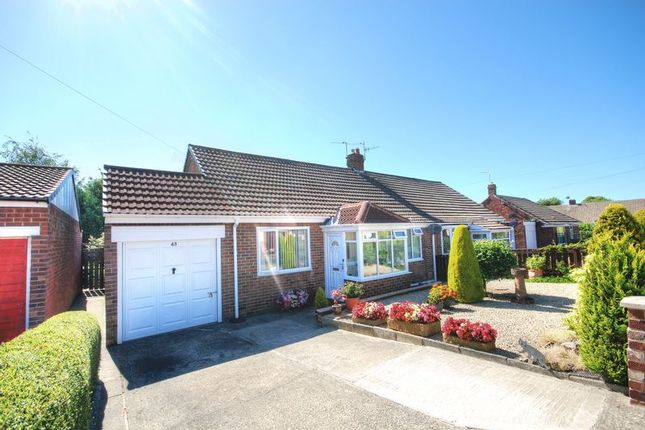 Thumbnail Semi-detached bungalow for sale in Priors Walk, Morpeth