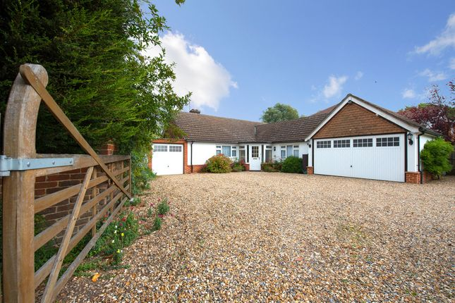 Thumbnail Detached bungalow for sale in East Hanningfield Road, Howe Green, Chelmsford