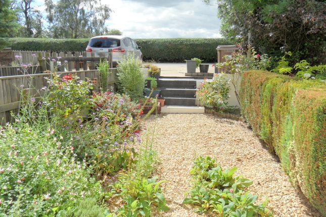 Front Garden of Roman Bank, Long Sutton, Spalding, Lincolnshire PE12