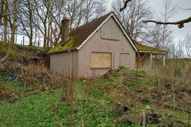 Thumbnail Detached bungalow for sale in The Croft, King Street, Brynmawr, Blaenau Gwent