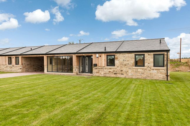 Thumbnail Barn conversion for sale in Meadow View, Bradley Hall Farm, South Wylam, Northumberland