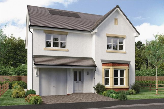 "Thumbnail Detached house for sale in ""Dale"" at Auld House Road, East Kilbride"