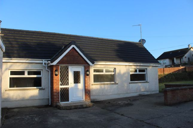 Thumbnail Detached bungalow to rent in Beach Lodge, 65 Cranfield Road, Newry