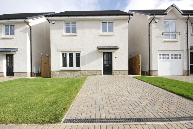 Thumbnail Detached house to rent in Douglas Marches, North Berwick