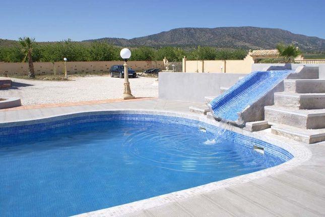Image17 of Pinoso, Alicante, Spain