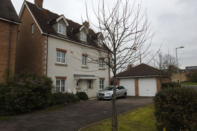 Thumbnail Detached house to rent in Knight Road, Rendlesham
