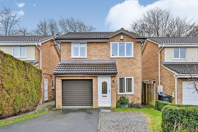 Thumbnail Detached house for sale in Warkworth Drive, Chester Le Street