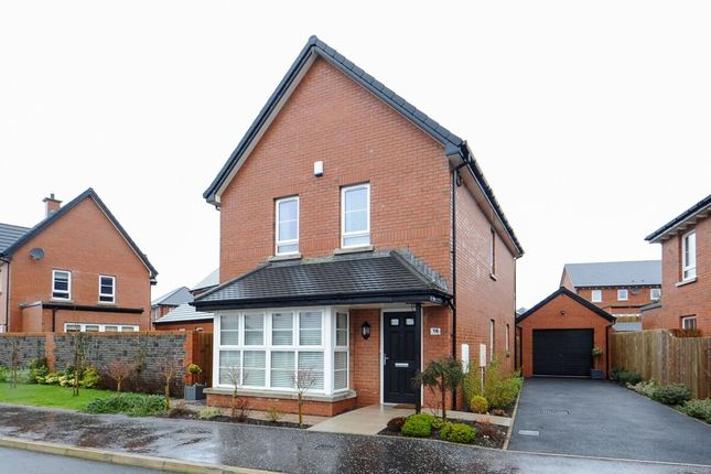 Thumbnail Detached house for sale in Millmount Village Avenue, Dundonald, Belfast