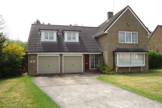 Thumbnail Detached house to rent in Beech Crescent, Darrington