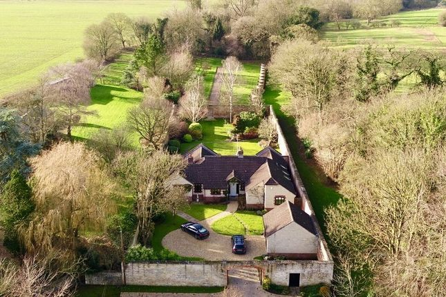 Thumbnail Detached bungalow for sale in Notton, Lacock, Wiltshire