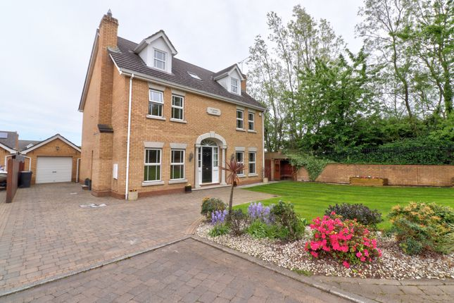 Thumbnail Detached house for sale in Ardvanagh Manor, Conlig, Newtownards