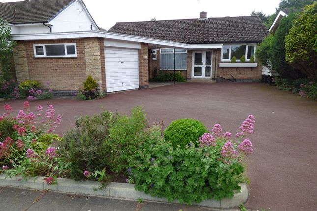 Thumbnail Bungalow to rent in Thoresby Road, Bramcote, Nottingham