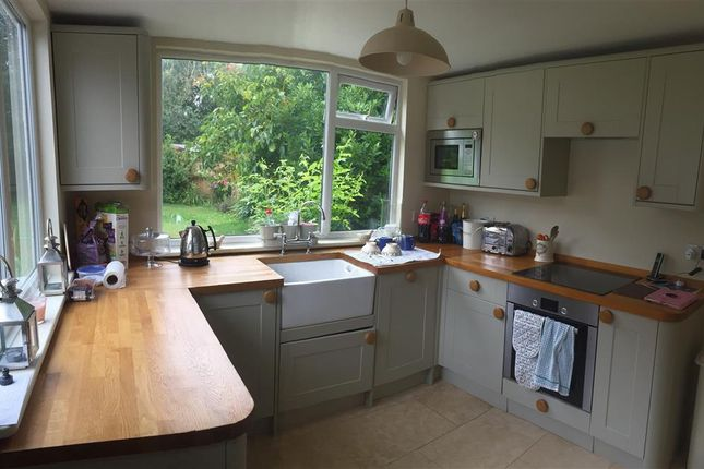 Thumbnail Cottage to rent in Painters Forstal, Faversham