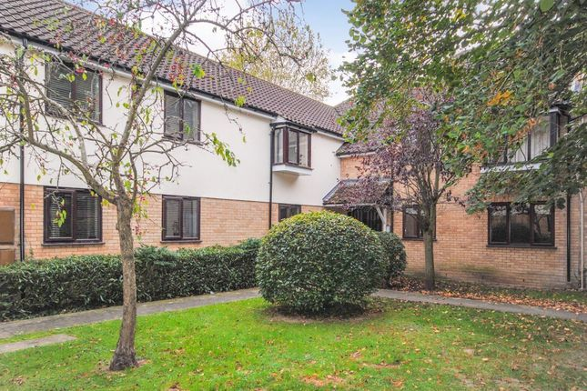 Thumbnail Detached house to rent in The Meadows, Sawbridgeworth