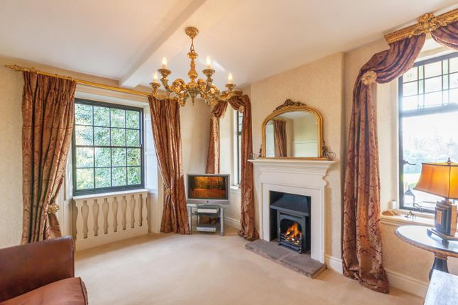 Thumbnail Detached house for sale in The Ford, Ridgeway, Sheffield