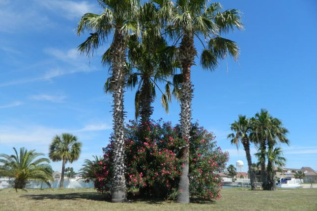 Thumbnail Land for sale in Pelican Cove, Aransas Pass, Texas, United States