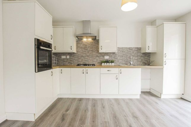 Thumbnail Bungalow to rent in Narvik Avenue, Burnley