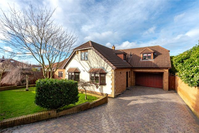 Thumbnail Detached house for sale in The Mount, Normanby, Middlesbrough