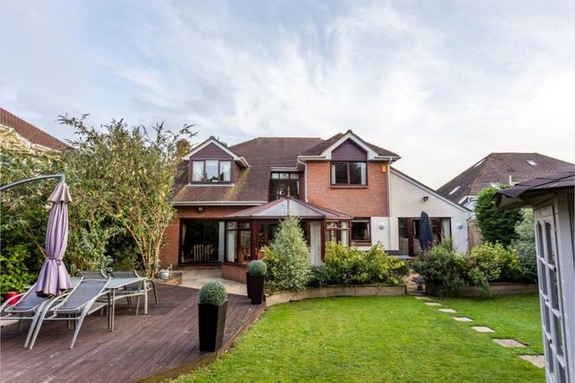 Thumbnail Detached house for sale in Roslin Gardens, Bournemouth