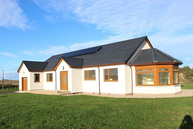 Thumbnail Detached bungalow for sale in Thrumster Mains, Thrumster