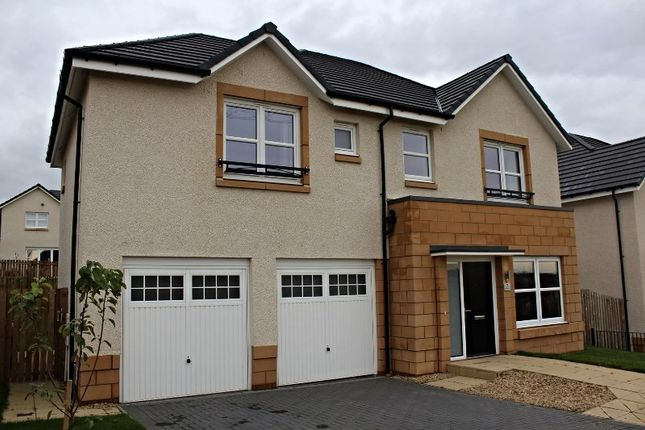 Thumbnail Detached house for sale in Mossbeath Grove, Broomhouse