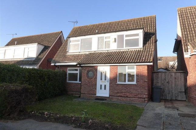 Thumbnail Detached house to rent in Downsway, Springfield, Chelmsford