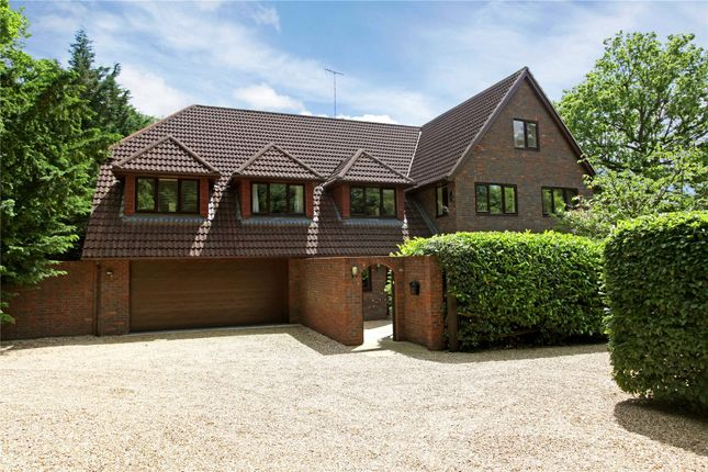 Thumbnail Detached house for sale in Durfold Wood, Plaistow, West Sussex