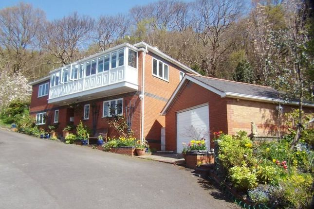 Thumbnail Detached house for sale in Chestnut Rise Rhyddyn Hill, Caergwrle, Wrexham