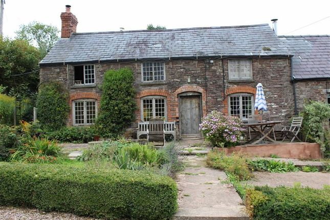 Thumbnail Cottage to rent in Skenfrith, Abergavenny