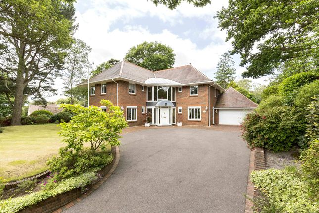 Thumbnail Detached house for sale in The Avenue, Poole, Dorset